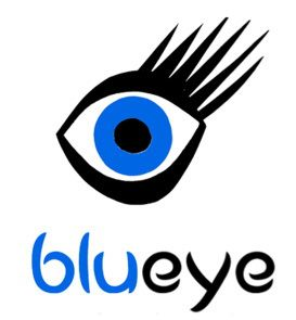 Blueye Events and consultancy