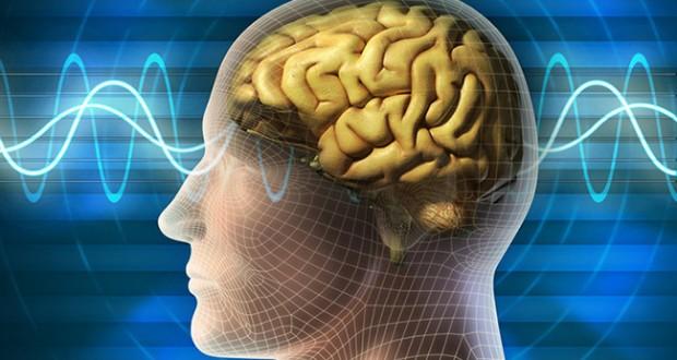 هكذا نساعد الدماغ