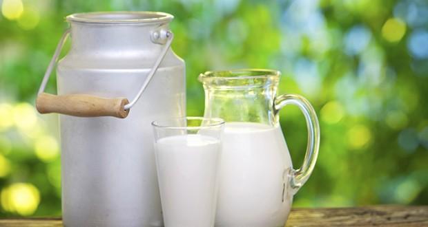 هل صحيح أن الحليب