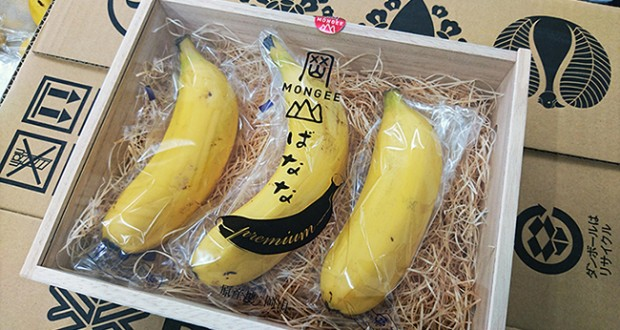 Mongee bananas reportedly sell for $6 each in Japan. Right now, they're very much a boutique crop.
