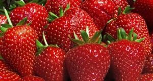 هذا ما يجب أن تعرفه عن فاكهة الفريز