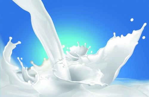 شرب الحليب صباحاً